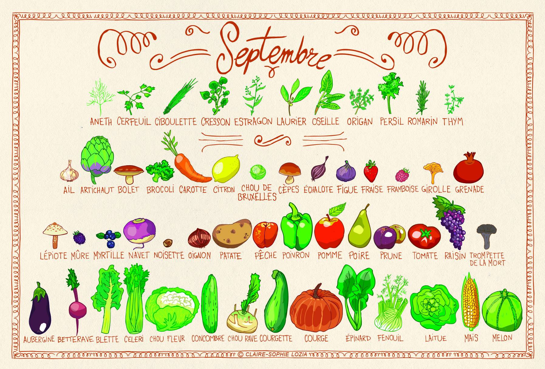 Fruits et l gumes de saison ysabelle levasseur - Fruit et legume de saison ...