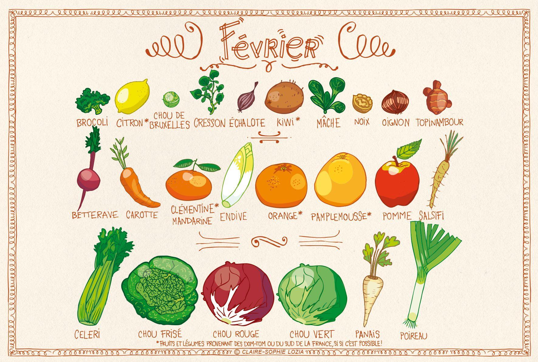 Fruits et l gumes de saison ysabelle levasseur - Fruit de saison decembre ...