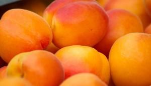 abricot_nutrition_ysabelle_levasseur_dieteticienne_nutritionniste