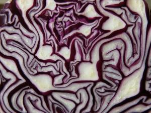 chou_rouge_bienfaits_nutrionnels_ysabelle_levasseur_dieteticienne_auteure_culinaire_nutritionniste