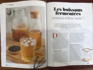 healthy_food_expert_nutrition_boissons_fermentees_ysabelle_levasseur_nutritionniste_dieteticienne
